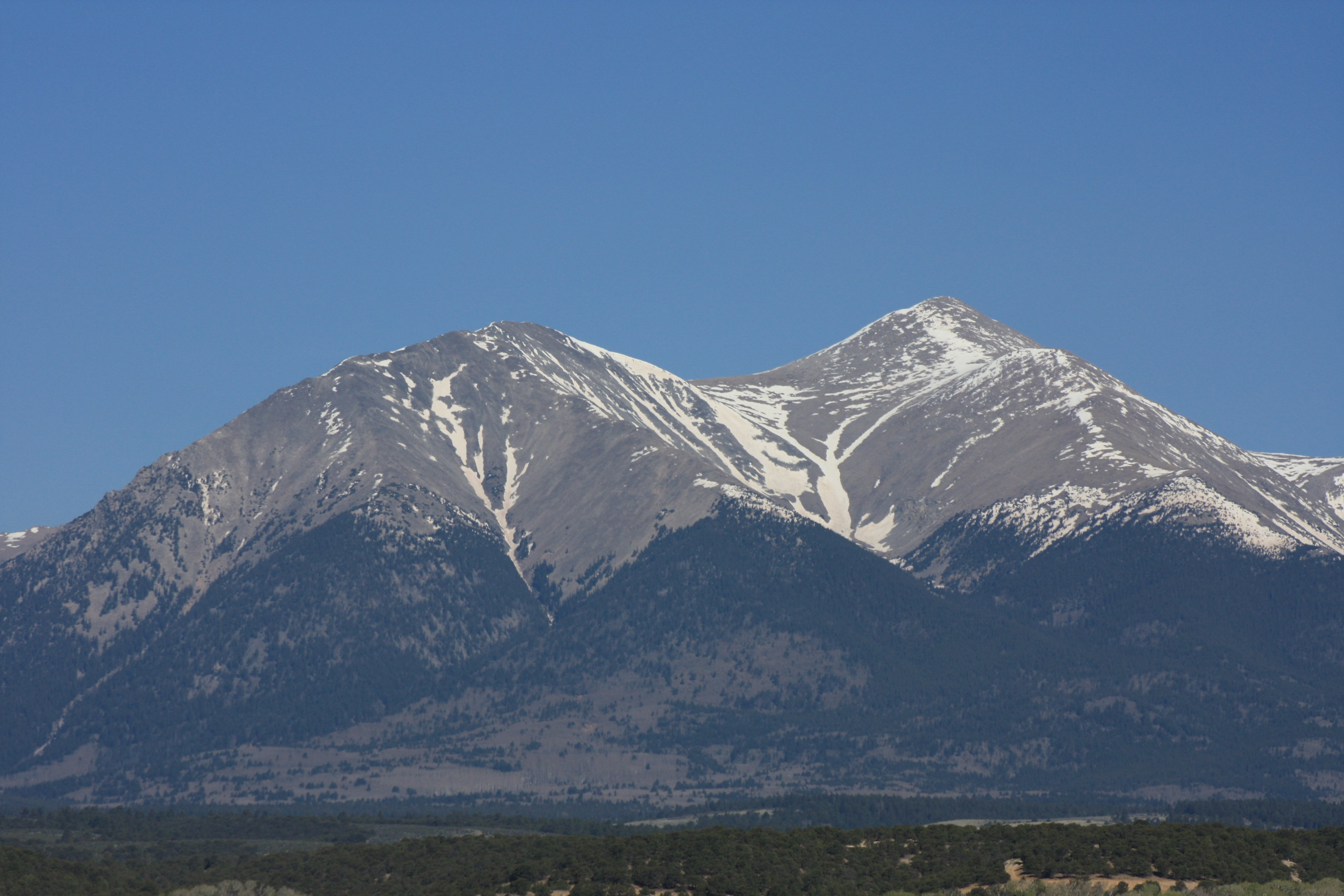 Mt. Shavano Wildlife Area, Salida, Colorado
