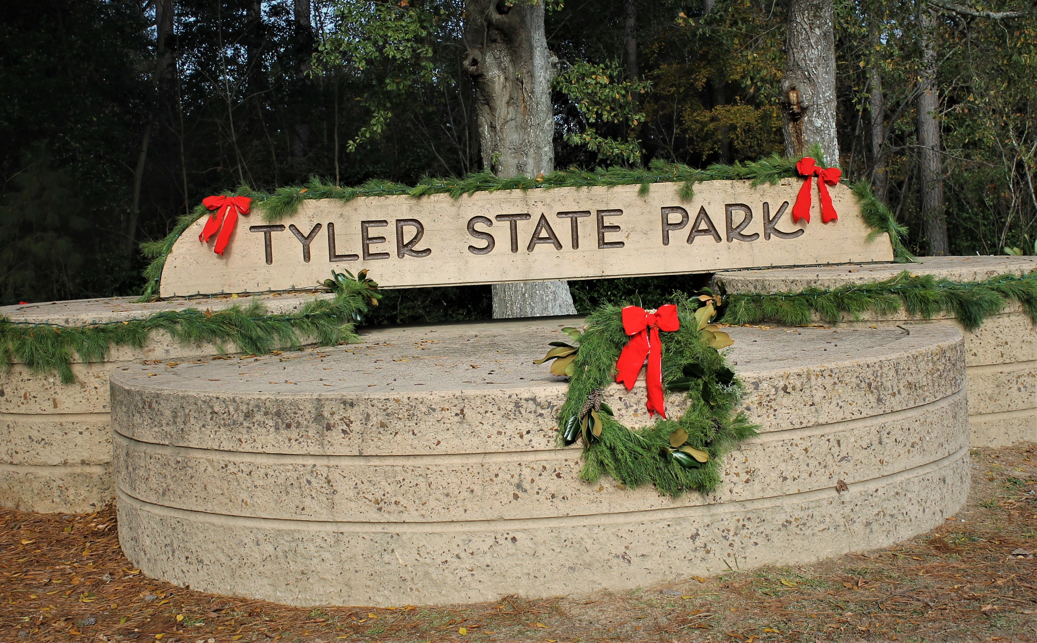 tyler state park, texas