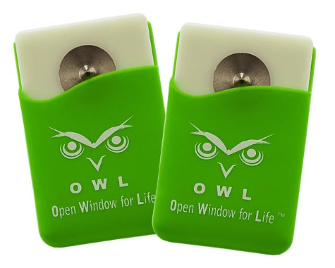 owl open window for life