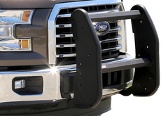 Ford F350 Dee Zee Bumper Guard