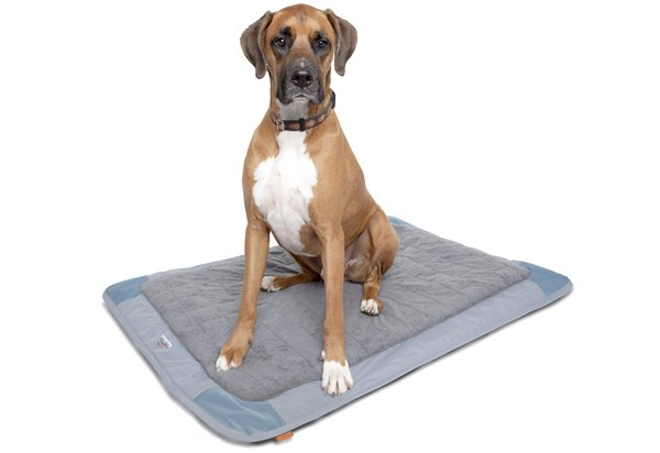 Classic Accessories DogAbout Deluxe Travel Mat