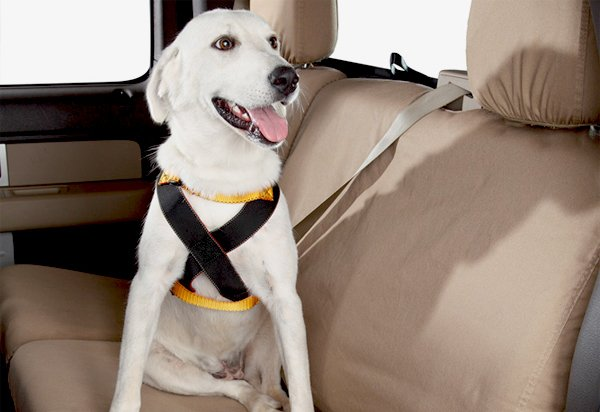 Ruff Rider Roadie Dog Harness