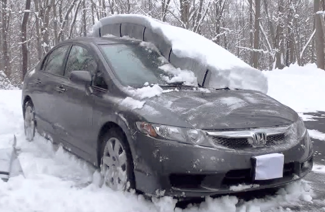 Covercraft Snow Shield Free Shipping On Winter