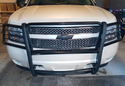Black Horse Grille Guard