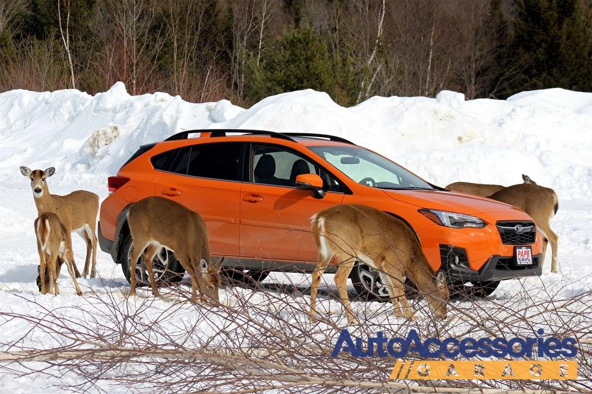 AEM Dryflow Air Filter Fits 08-17 Chevrolet GMC