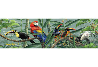 Jungle Macaw Parrot Rear Window Graphic Decal Truck SUV